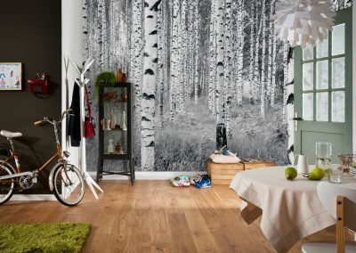 xxl4-023_woods_interieur_i - copia